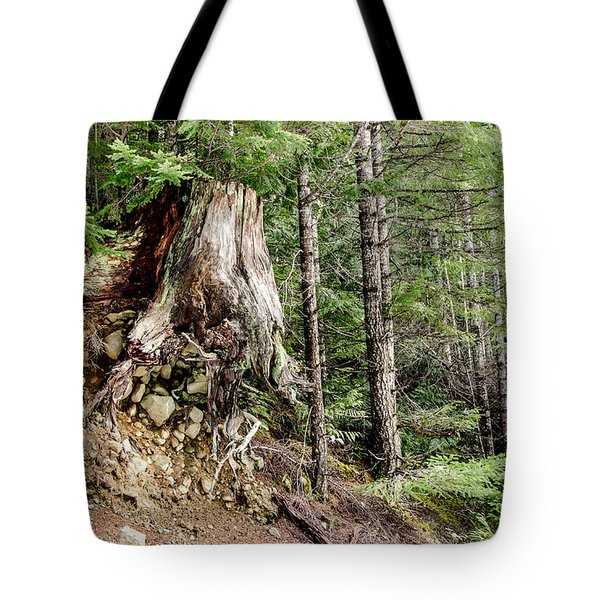 Just Hanging On Old Growth Forest Stump Tote Bag