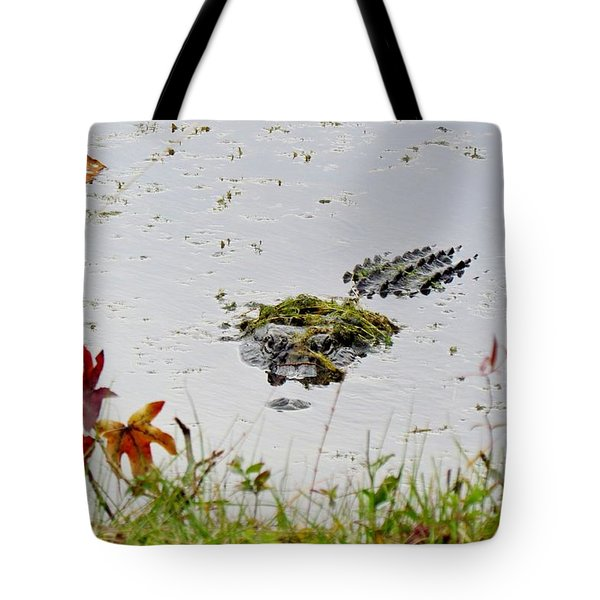Tote Bag featuring the photograph Just Hanging Out by Cynthia Guinn