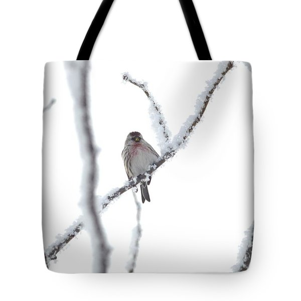 Tote Bag featuring the photograph Just Hanging Out by Dacia Doroff