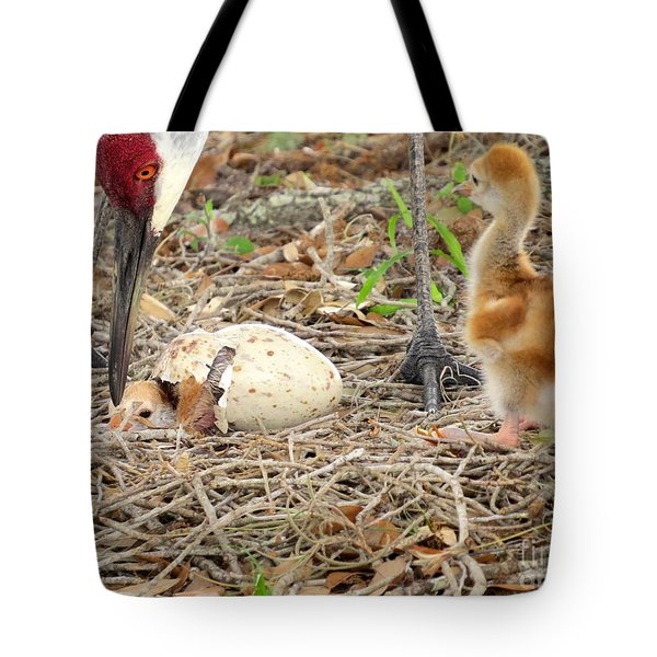 Just Hatching Tote Bag by Zina Stromberg