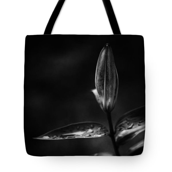 Tote Bag featuring the photograph Just One by Ben Shields