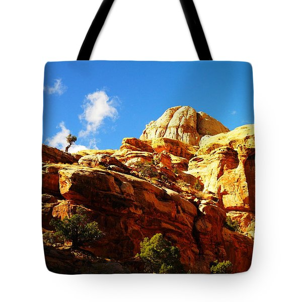 Just One Tree Tote Bag by Jeff Swan