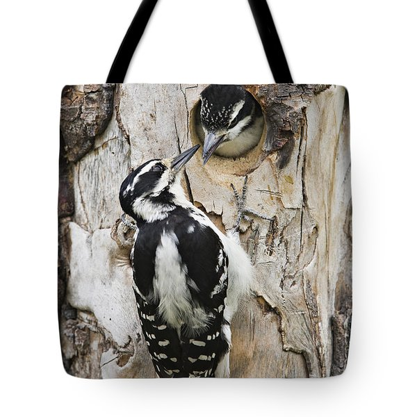Juvenile Hairy Woodpecker Is Fed Tote Bag by Ray Bulson