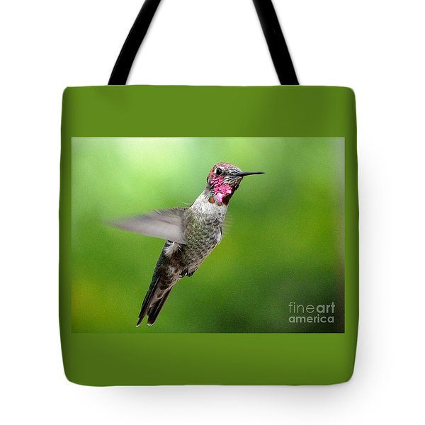 Tote Bag featuring the photograph Juvenile Male Anna's In Flight by Jay Milo