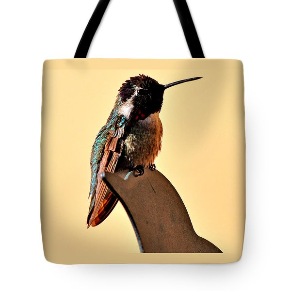 Tote Bag featuring the photograph Juvenile Rufus Hummingbird Sitting It Out by Jay Milo