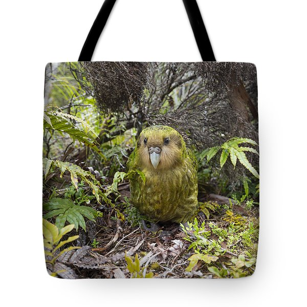 Tote Bag featuring the photograph Kakapo Male In Forest Codfish Island by Tui De Roy