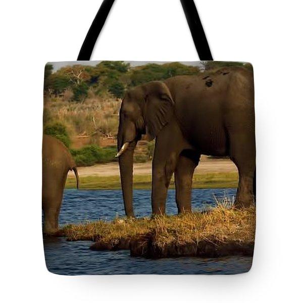 Tote Bag featuring the photograph Kalahari Elephants Preparing To Cross Chobe River by Amanda Stadther