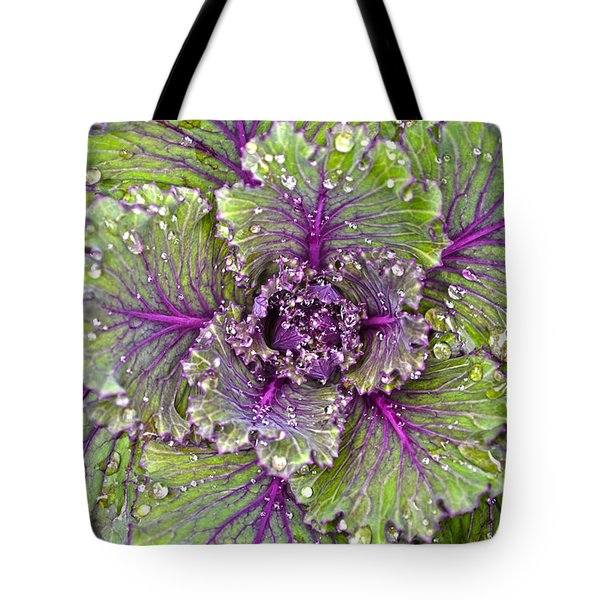 Kale Plant In The Rain Tote Bag