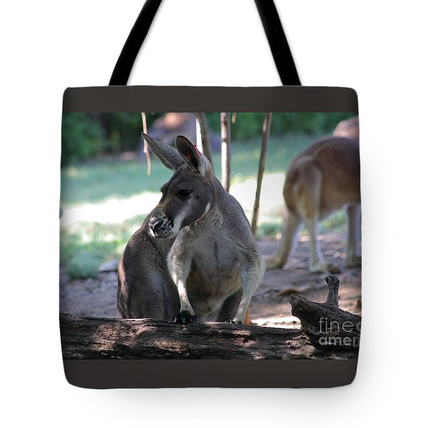 Kangaroo-2 Tote Bag by Gary Gingrich Galleries