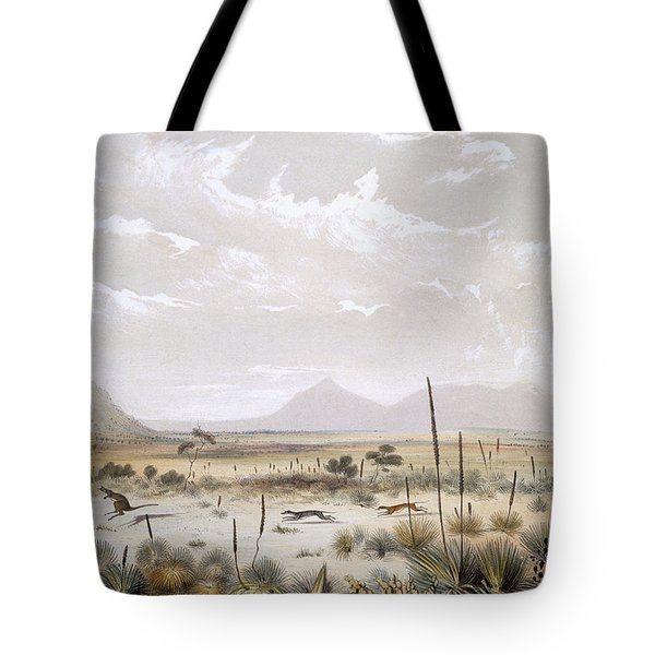 Kangaroo Hunting Near Port Lincoln Tote Bag by George French Angas