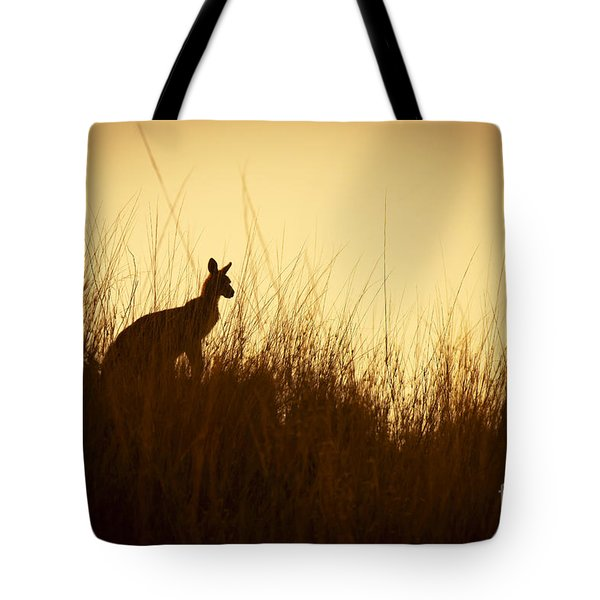 Kangaroo Silhouettes Tote Bag by Tim Hester