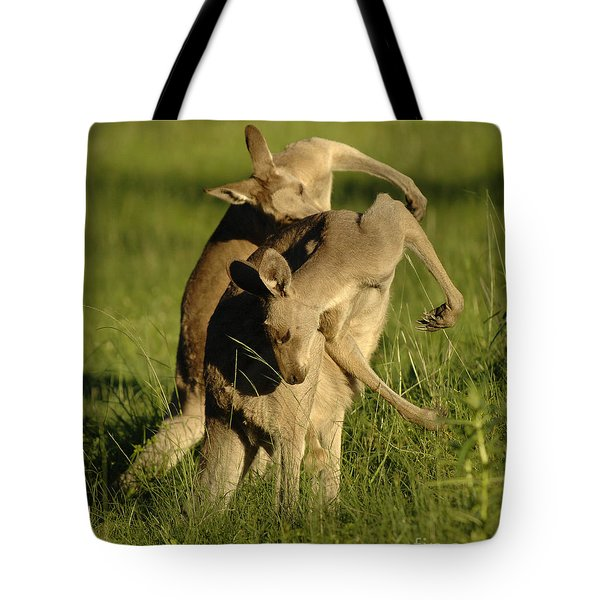 Kangaroos Taking A Bow Tote Bag by Bob Christopher