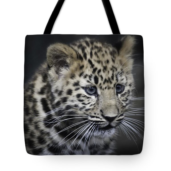 Kanika - Amur Leopard Portrait Tote Bag by Chris Boulton