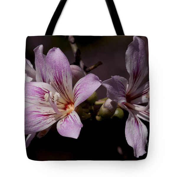Kapok Bloom Tote Bag