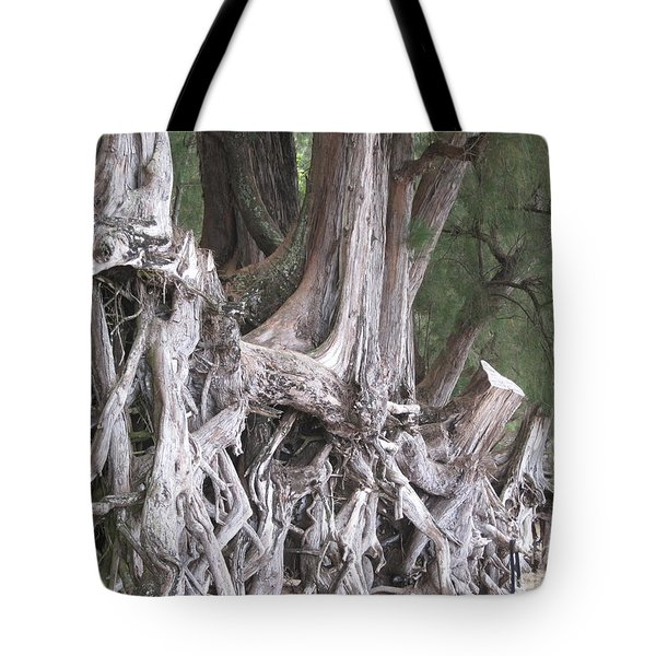 Tote Bag featuring the photograph Kauai - Roots by HEVi FineArt