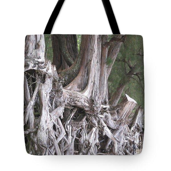 Kauai - Roots Tote Bag