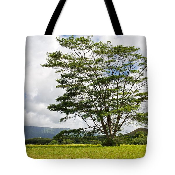 Kauai Umbrella Tree Tote Bag