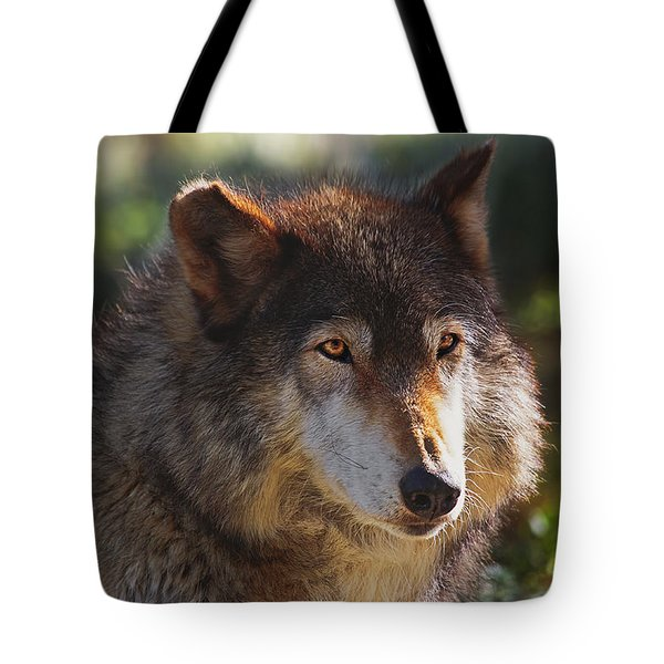 Keara  Tote Bag by Brian Cross
