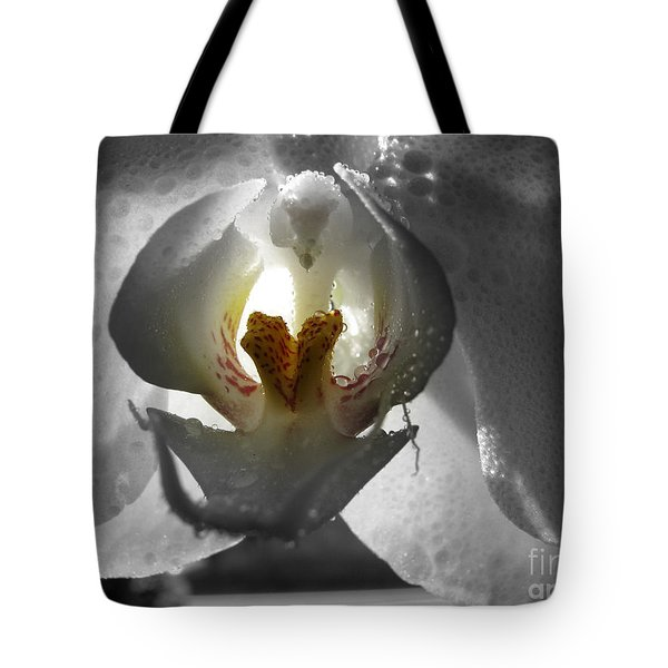 Keeper Of The Light Bw Tote Bag