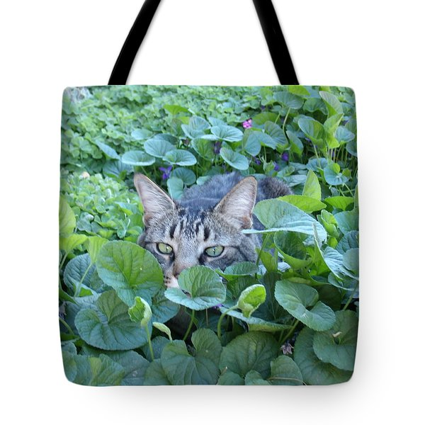 Keeping An Eye On You Tote Bag by David S Reynolds