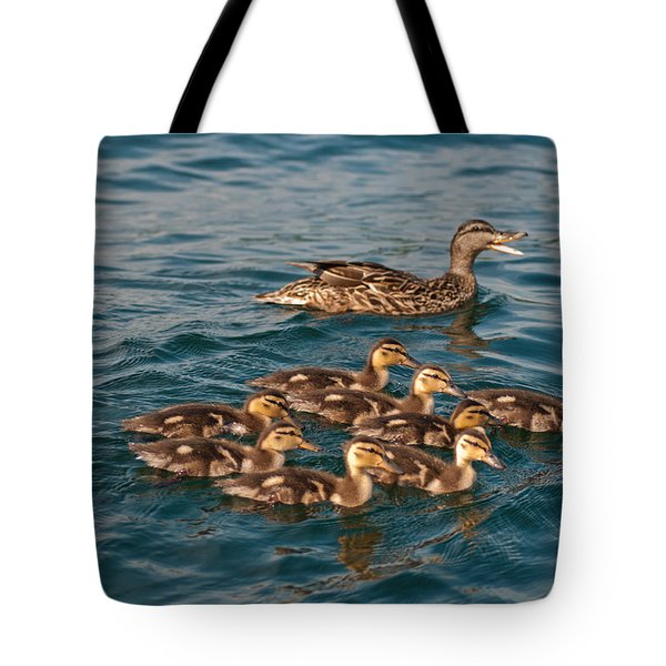 Keeping Them All Inline Tote Bag