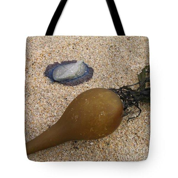 Kelp Float And Velella Tote Bag