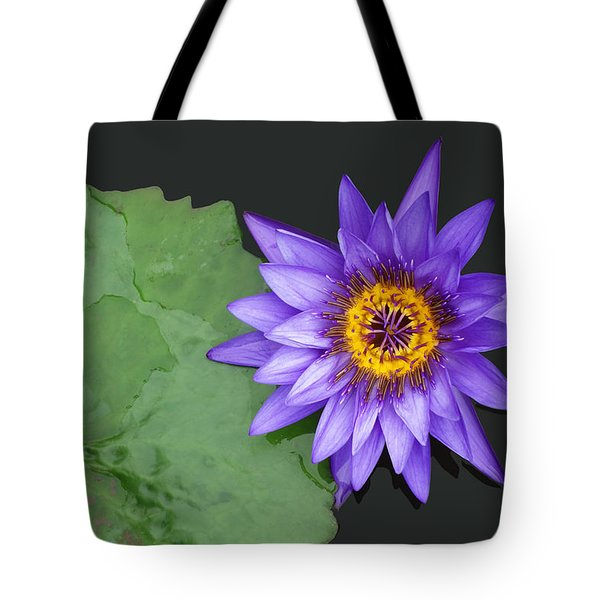 Kenilworth Aquatic Garden Tote Bag
