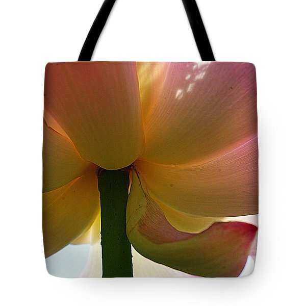 Tote Bag featuring the photograph Kenilworth Garden Four by John S