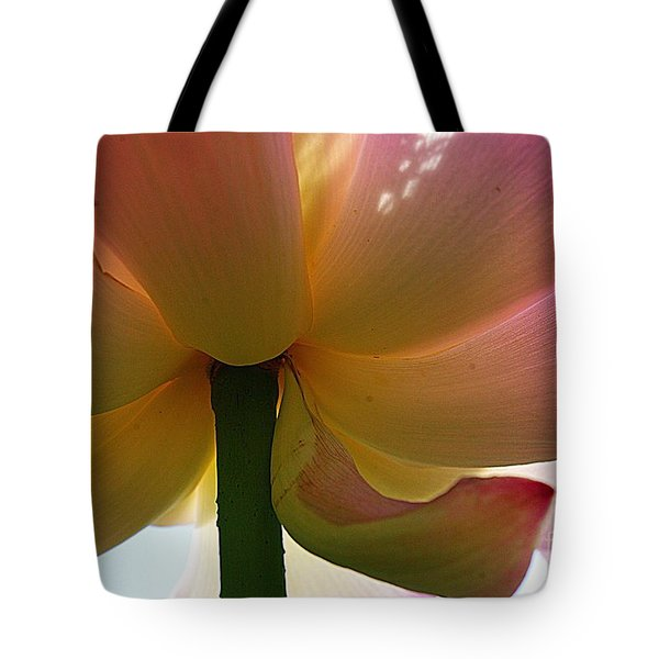 Kenilworth Garden Four Tote Bag