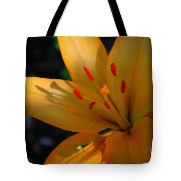 Tote Bag featuring the photograph Kenilworth Garden One by John S