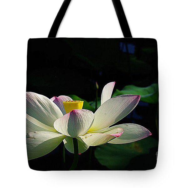 Kenilworth Garden Two Tote Bag by John S