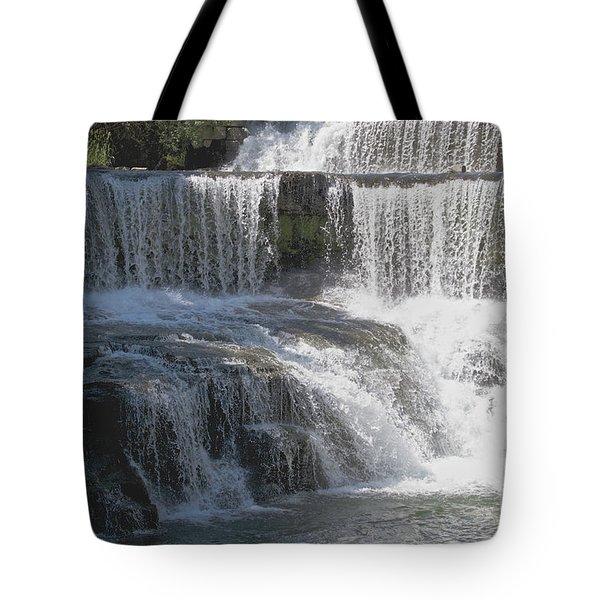 Keuka Seneca Waterfall Tote Bag by William Norton