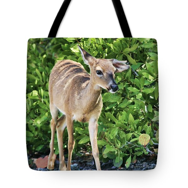 Key Deer Cuteness Tote Bag