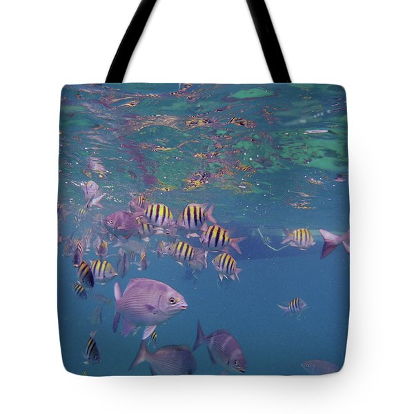 Keys Reef Tote Bag by Carey Chen