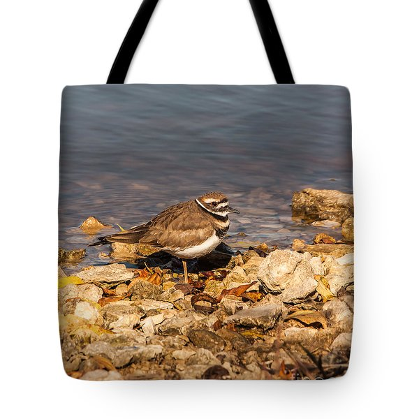 Kildeer On The Rocks Tote Bag