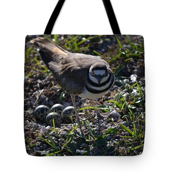 Killdeer Guarding Her Eggs Tote Bag by Tara Potts