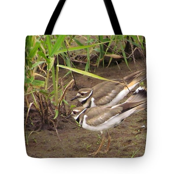 Tote Bag featuring the photograph Killdeer Pair by I'ina Van Lawick