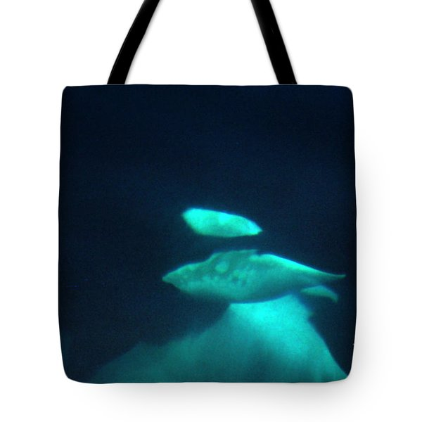 Tote Bag featuring the photograph Killer Whales Orcas Under Water  Off The San Juan Islands 1986 by California Views Mr Pat Hathaway Archives