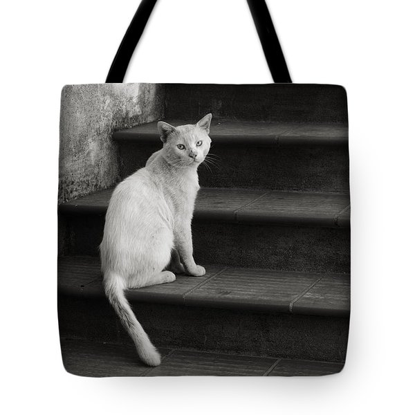 Tote Bag featuring the photograph Kimba by Laura Melis