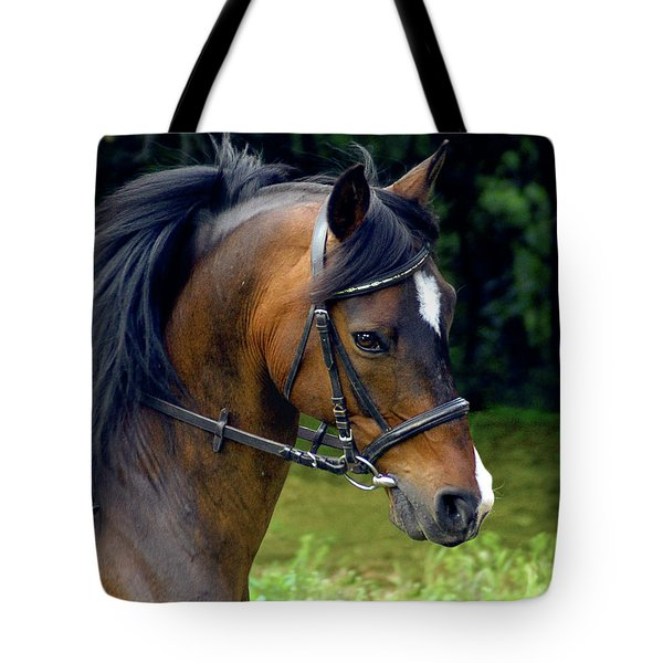 Kind Eye Willing Heart Tote Bag