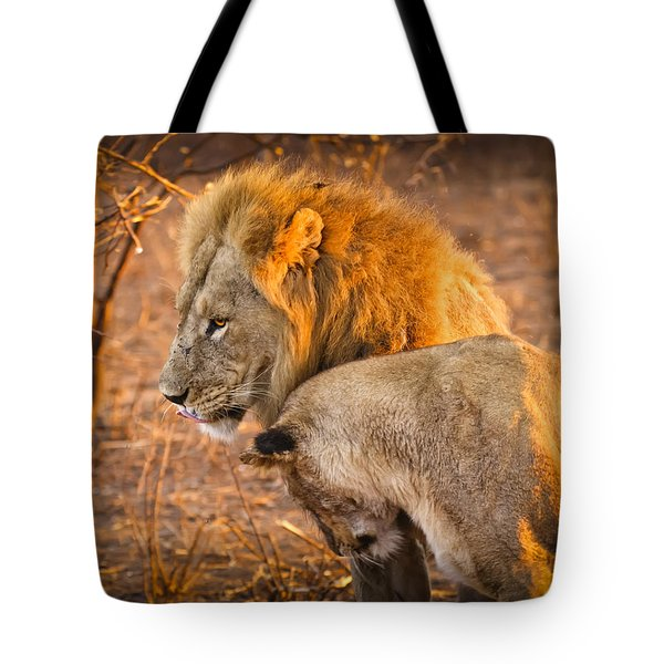 King And Queen Tote Bag by Adam Romanowicz