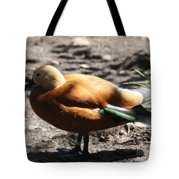 King Eider Duck Tote Bag by John Telfer