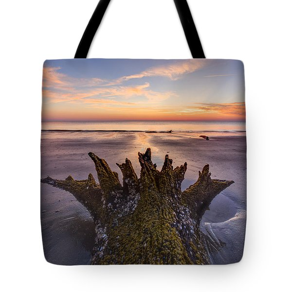 King Neptune Tote Bag by Debra and Dave Vanderlaan