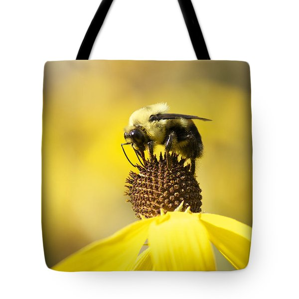 King Of The Coneflower Tote Bag by Penny Meyers