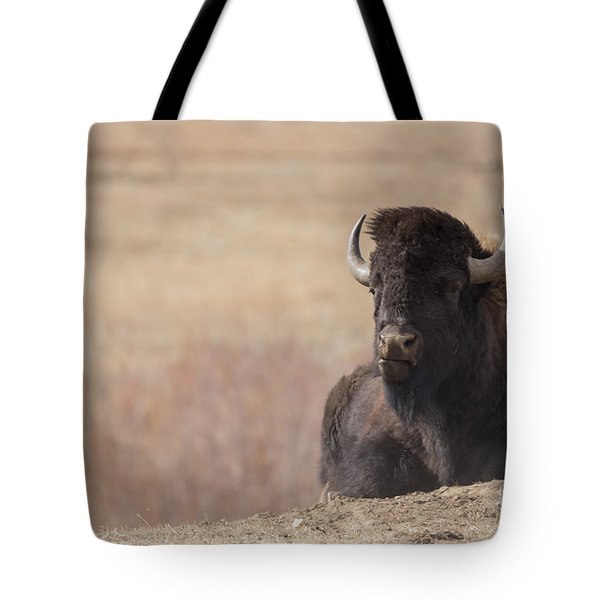 King Of The Hill At Custer State Park South Dakota Tote Bag