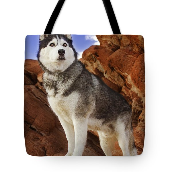 King Of The Huskies Tote Bag