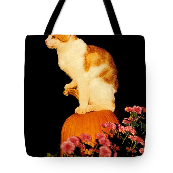 King Of The Pumpkin Tote Bag