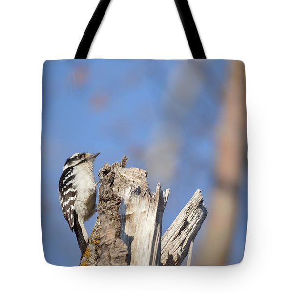 Tote Bag featuring the photograph King Of The Tree Top by Dacia Doroff