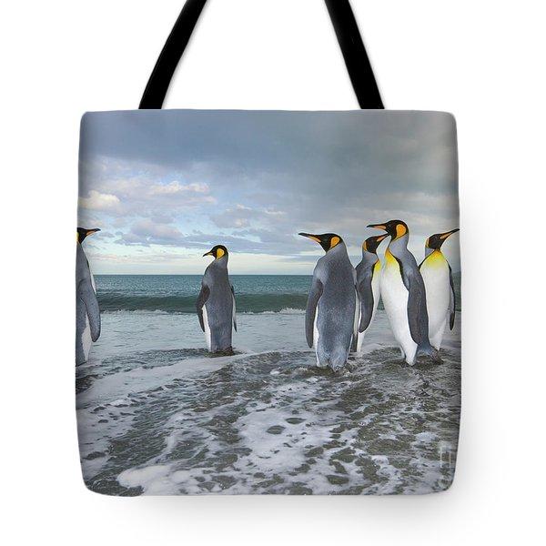 King Penguin In The Surf Tote Bag by Yva Momatiuk John Eastcott