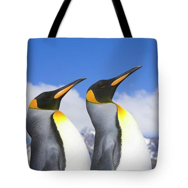 King Penguin Duo Tote Bag by Yva Momatiuk John Eastcott